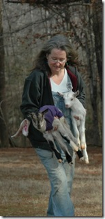 twin goats and Mary Droessler of Winterpast Farm